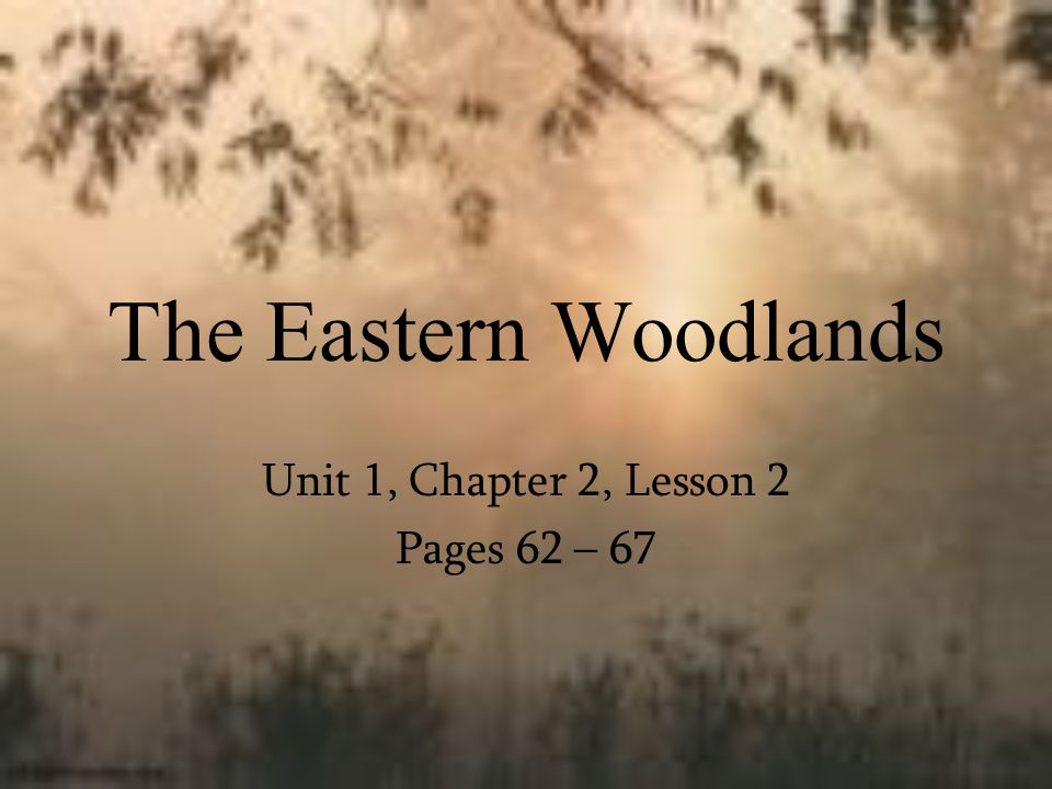 The Eastern Woodlands Unit 1, Chapter 2, Lesson 2 Pages 62 – 67