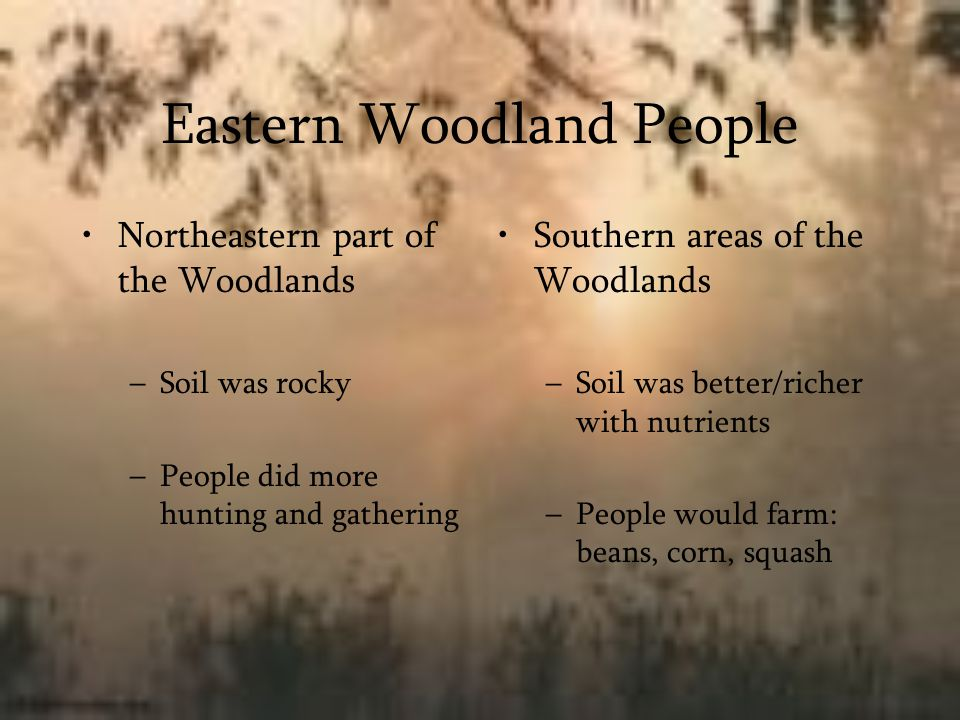 Eastern Woodland People Northeastern part of the Woodlands –Soil was rocky –People did more hunting and gathering Southern areas of the Woodlands –Soi