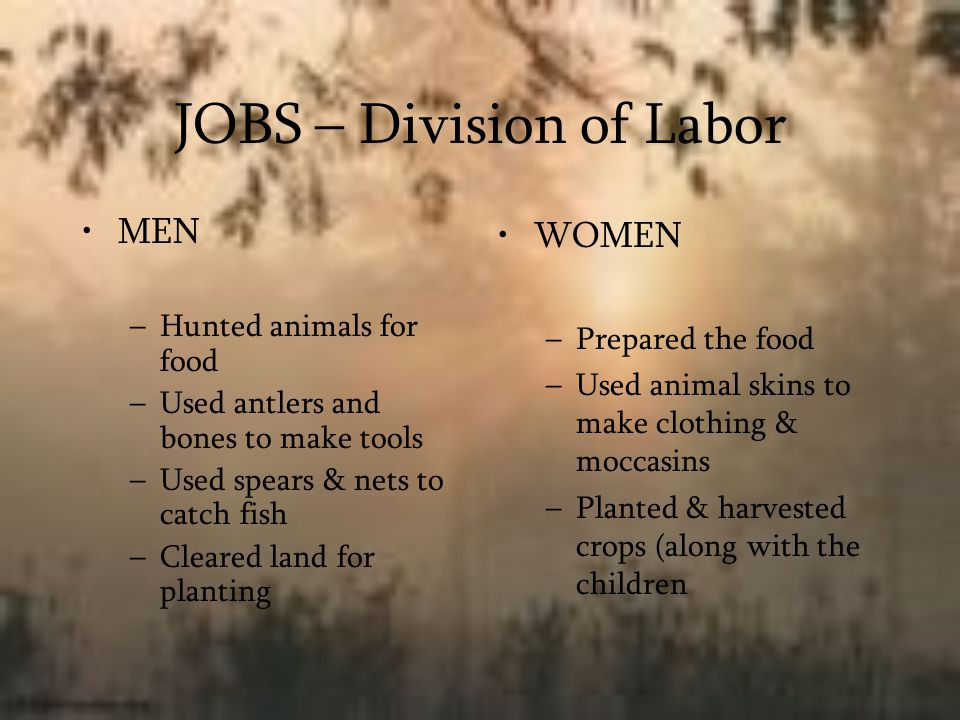 JOBS – Division of Labor MEN –Hunted animals for food –Used antlers and bones to make tools –Used spears & nets to catch fish –Cleared land for planti