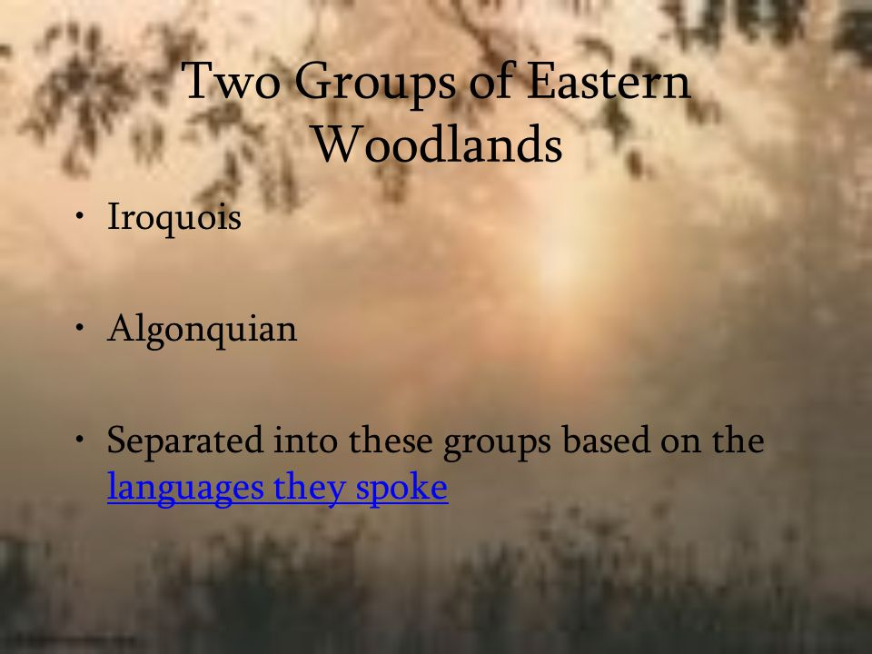 Two Groups of Eastern Woodlands Iroquois Algonquian Separated into these groups based on the languages they spoke