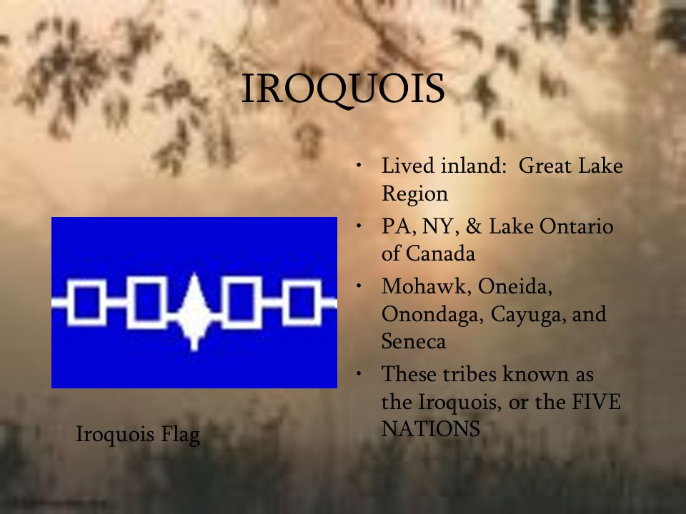 Iroquois Villages Iroquois were farmers Built on steep hills PALISADES – walls of tall wooden poles Built around villages for protection