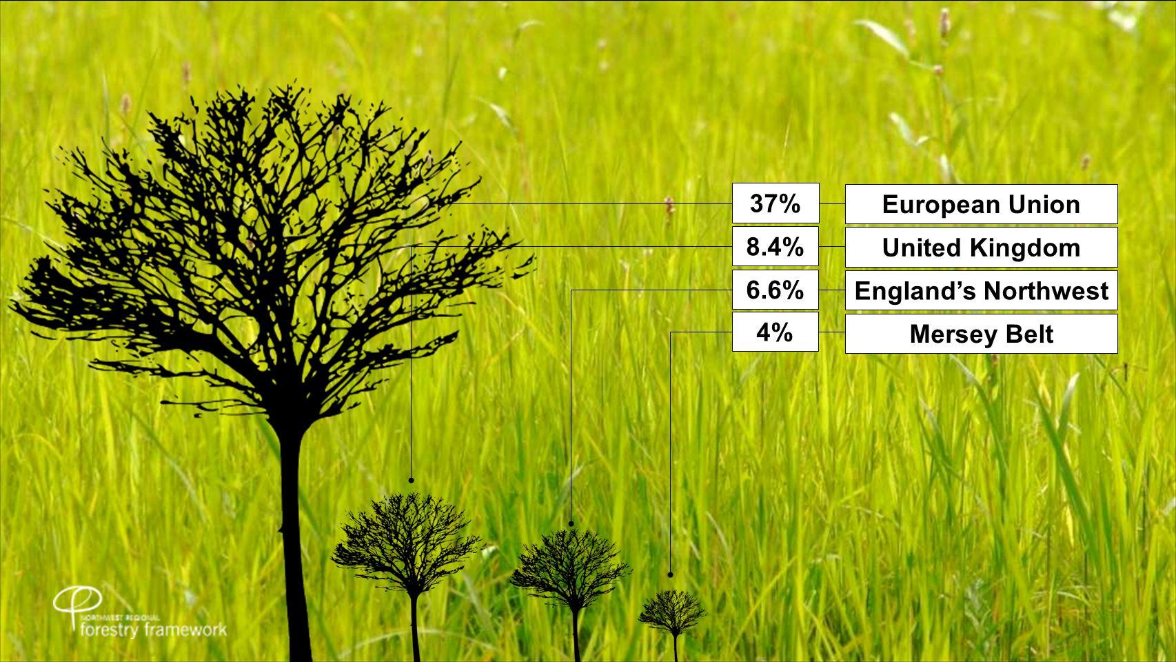 European Union 37% United Kingdom 8.4% England's Northwest 6.6% Mersey Belt 4%