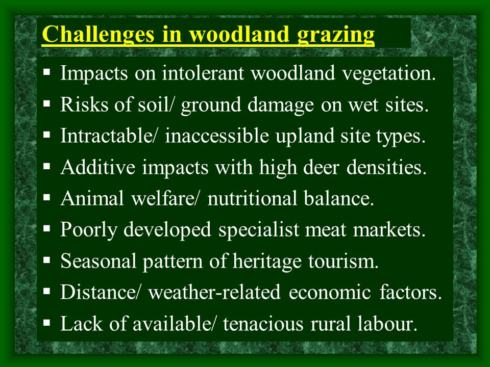 Challenges in woodland grazing  Impacts on intolerant woodland vegetation.