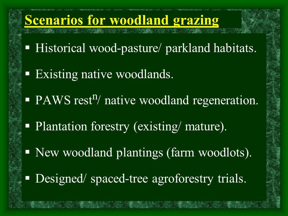 Scenarios for woodland grazing  Historical wood-pasture/ parkland habitats.  Existing native woodlands.  PAWS rest n / native woodland regeneration