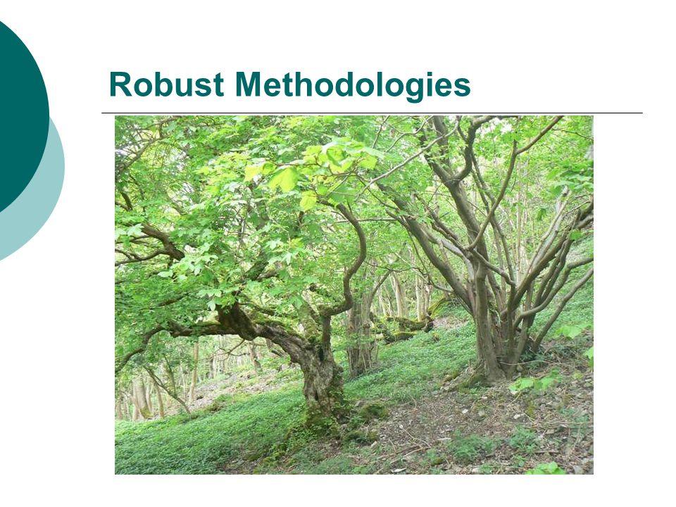 Robust Methodologies