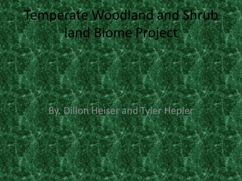 Temperate Woodland and Shrub land Biome Project By. Dillon Heiser and Tyler Hepler