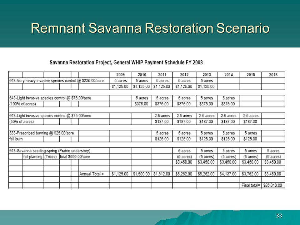33 Remnant Savanna Restoration Scenario