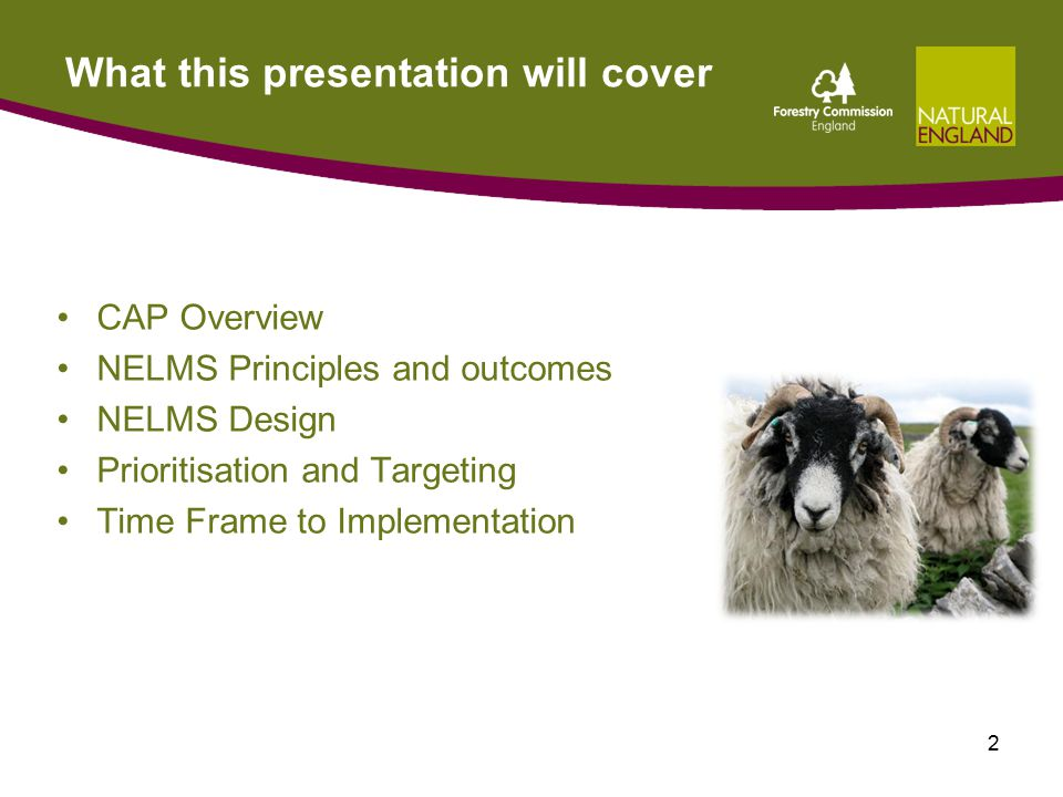 What this presentation will cover CAP Overview NELMS Principles and outcomes NELMS Design Prioritisation and Targeting Time Frame to Implementation 2