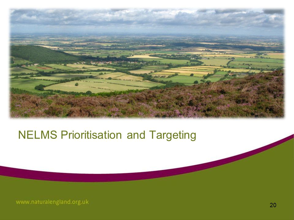 NELMS Prioritisation and Targeting 20