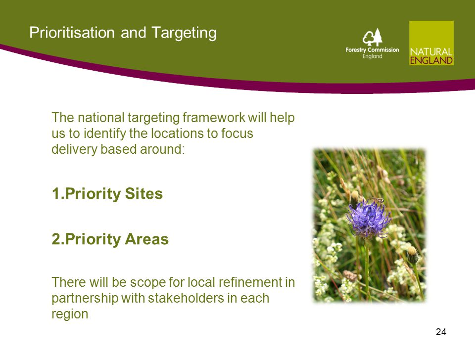 Prioritisation and Targeting The national targeting framework will help us to identify the locations to focus delivery based around: 1.Priority Sites 2.Priority Areas There will be scope for local refinement in partnership with stakeholders in each region 24