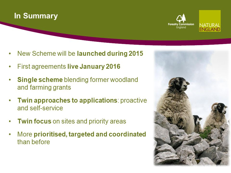 In Summary New Scheme will be launched during 2015 First agreements live January 2016 Single scheme blending former woodland and farming grants Twin approaches to applications: proactive and self-service Twin focus on sites and priority areas More prioritised, targeted and coordinated than before 31