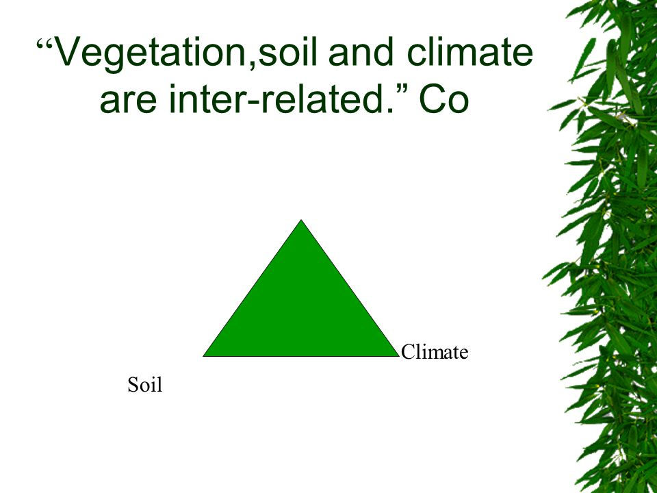 """ Vegetation,soil and climate are inter-related."" Co Soil Climate"
