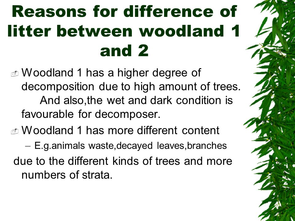 Reasons for difference of litter between woodland 1 and 2  Woodland 1 has a higher degree of decomposition due to high amount of trees. And also,the