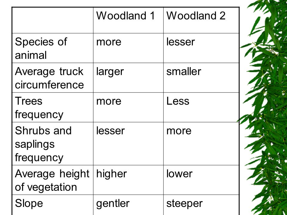 Woodland 2 Species of animal morelesser Average truck circumference largersmaller Trees frequency moreLess Shrubs and saplings frequency lessermore Average height of vegetation higherlower Slopegentlersteeper
