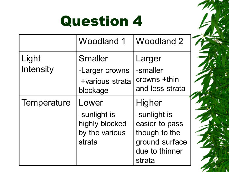 Question 4 Woodland 1Woodland 2 Light Intensity Smaller -Larger crowns +various strata blockage Larger -smaller crowns +thin and less strata Temperatu