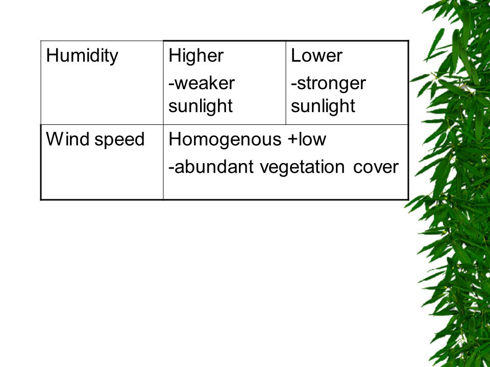 HumidityHigher -weaker sunlight Lower -stronger sunlight Wind speedHomogenous +low -abundant vegetation cover