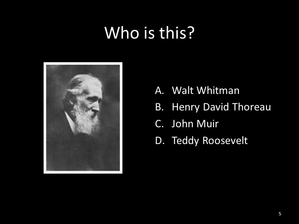 5 Who is this A.Walt Whitman B.Henry David Thoreau C.John Muir D.Teddy Roosevelt