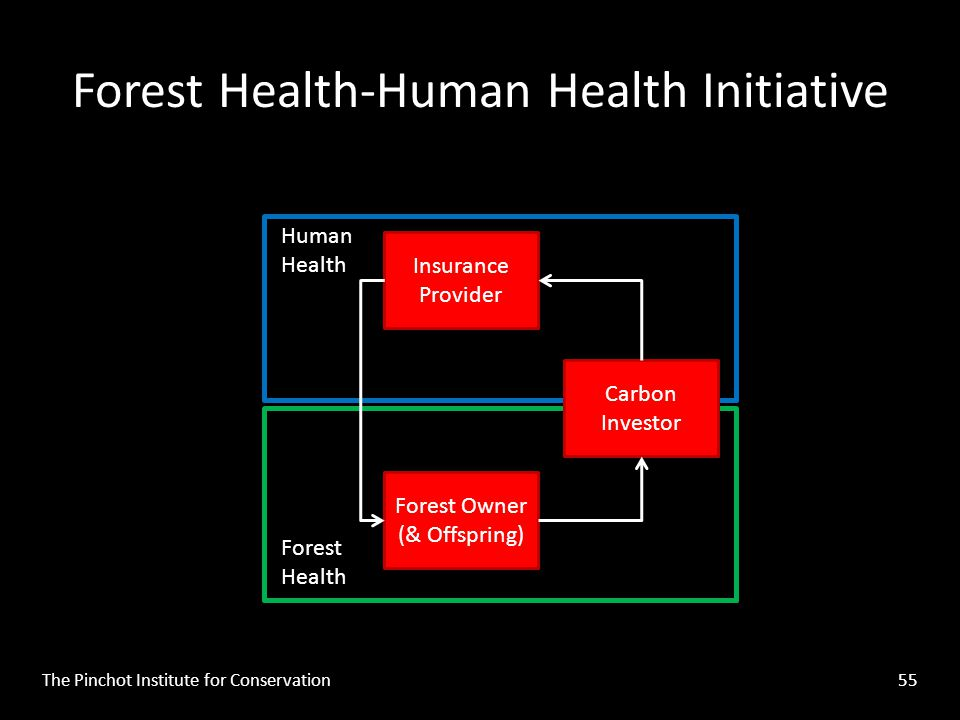 Forest Health-Human Health Initiative The Pinchot Institute for Conservation 55 Insurance Provider Forest Owner (& Offspring) Forest Health Human Health Carbon Investor