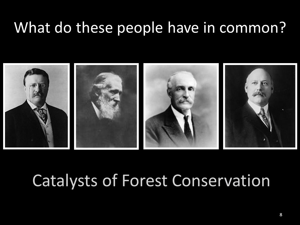 8 What do these people have in common Catalysts of Forest Conservation