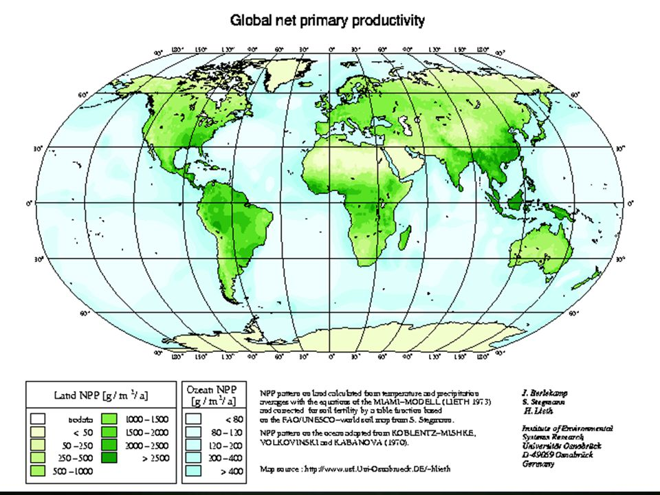Productivity OCR 7.37 Productivity > refers to the rate of energy production, normally on an annual basis Primary Productivity > refers to plant productivity Secondary Productivity > refers to that produced by animals Gross Productivity > is the total amount of energy fixed Net Productivity > is the amount of energy left after losses of respiration and growth are taken into account Net Primary Productivity (NPP) is the amount of energy made available by plants to animals at the herbivore level