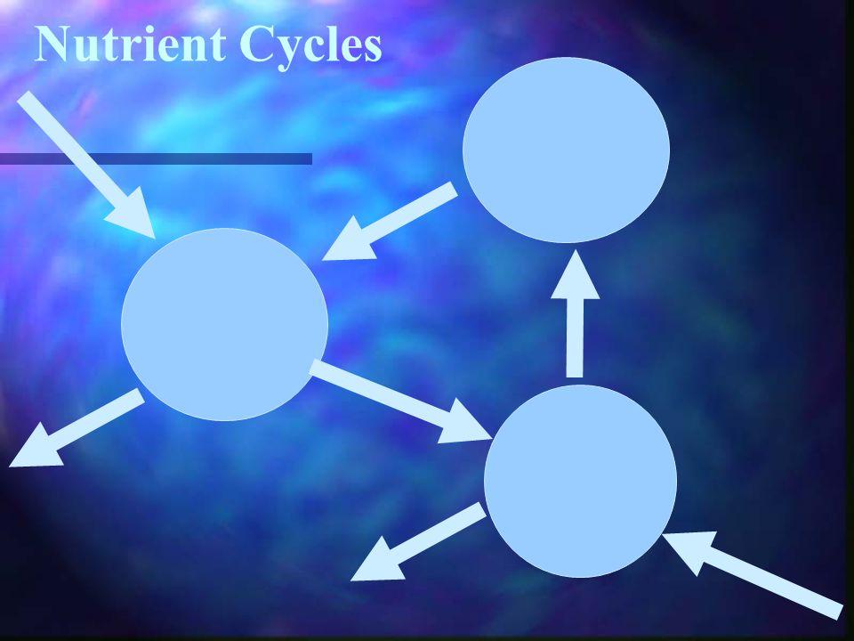 OCR 7.39 Gershmel's Nutrient Cycles