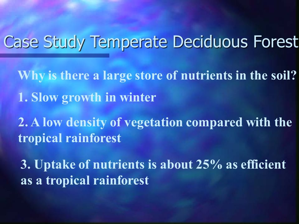Temperate deciduous forest balance between stores moderate transfers between stores