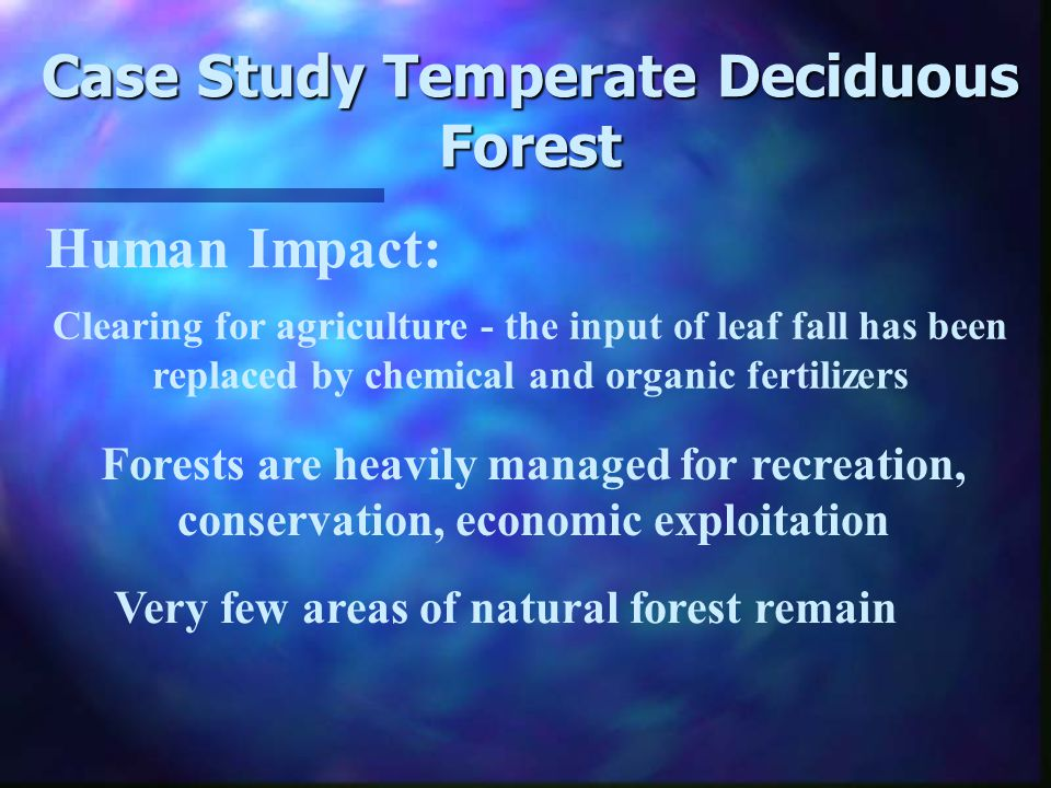 Case Study Temperate Deciduous Forest Why is there a larger store of nutrients in Litter.