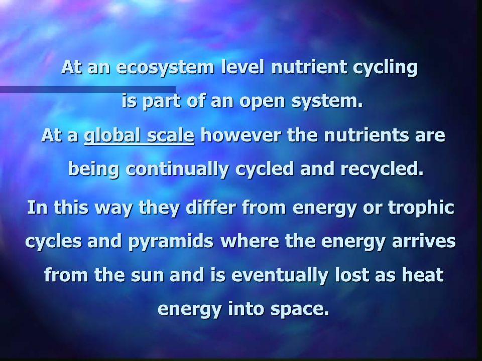 Macro-nutrients Carbon Oxygen Hydrogen Nitrogen Micro-Nutrients Magnesium Sulphur Phosphorous