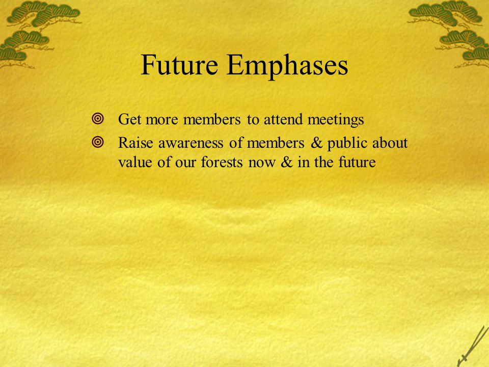 Future Emphases  Get more members to attend meetings