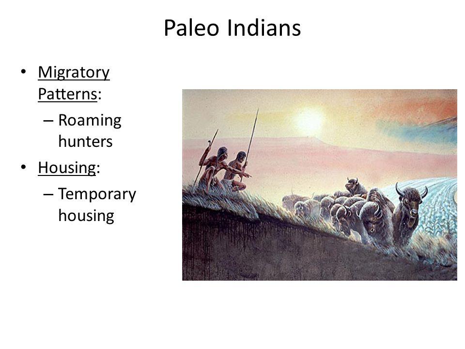 Paleo Indians Migratory Patterns: – Roaming hunters Housing: – Temporary housing