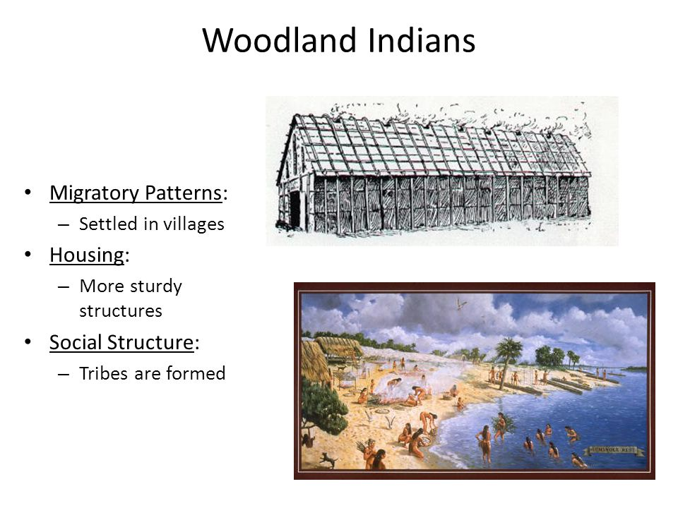 Woodland Indians Migratory Patterns: – Settled in villages Housing: – More sturdy structures Social Structure: – Tribes are formed