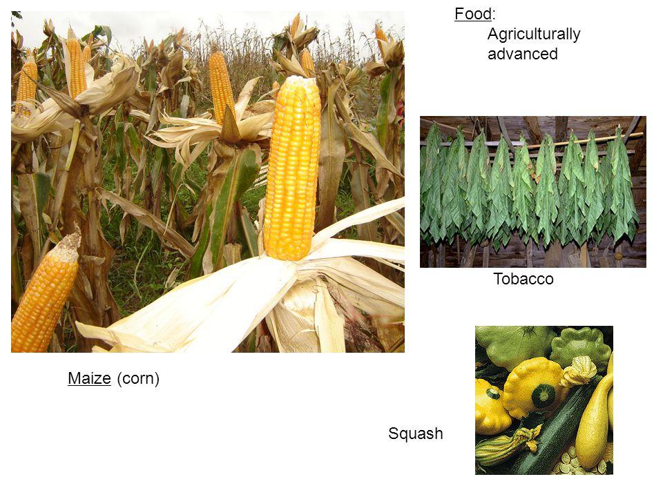 Maize (corn) Tobacco Squash Food: Agriculturally advanced