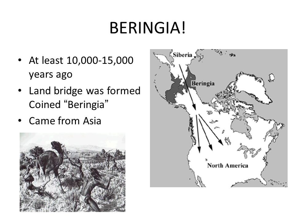 """BERINGIA! At least 10,000-15,000 years ago Land bridge was formed Coined """"Beringia"""" Came from Asia"""