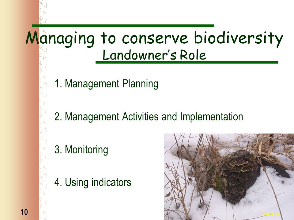 10 Managing to conserve biodiversity Landowner's Role 1. Management Planning 2. Management Activities and Implementation 3. Monitoring 4. Using indica