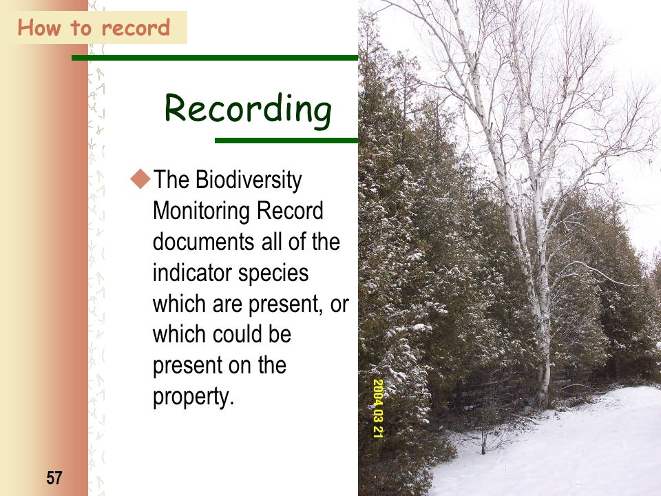 57 Recording  The Biodiversity Monitoring Record documents all of the indicator species which are present, or which could be present on the property.