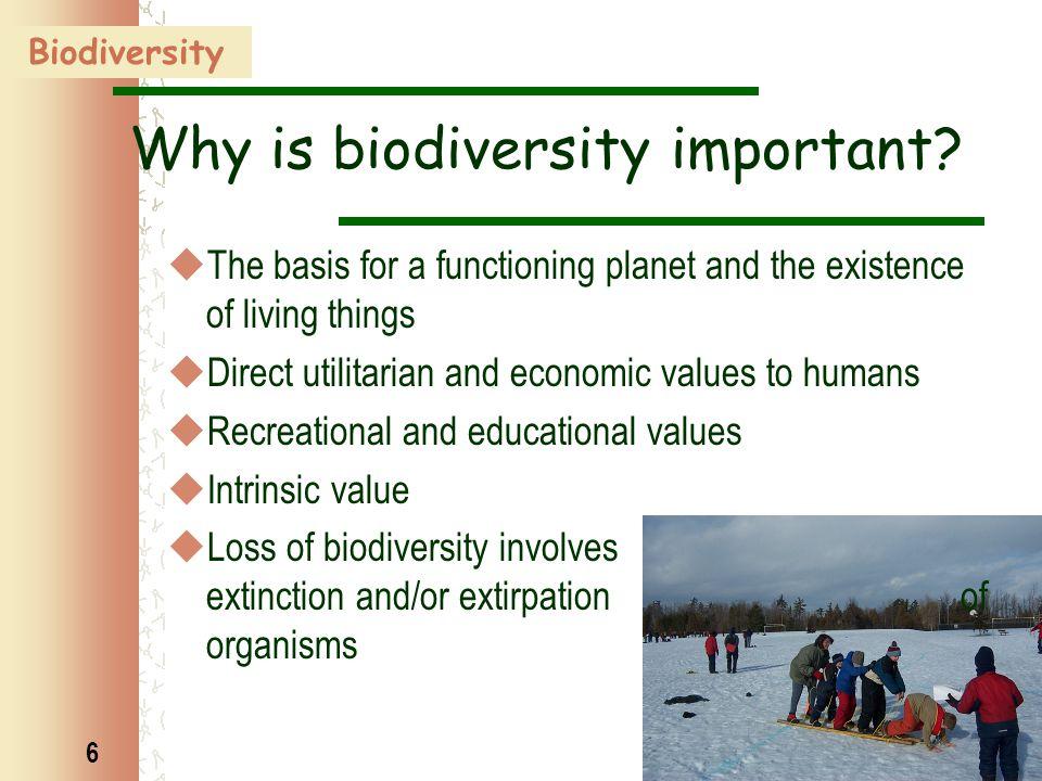 7 Levels of biodiversity  Genetic diversity  Species richness  Community / ecosystem diversity  Landscape diversity Biodiversity