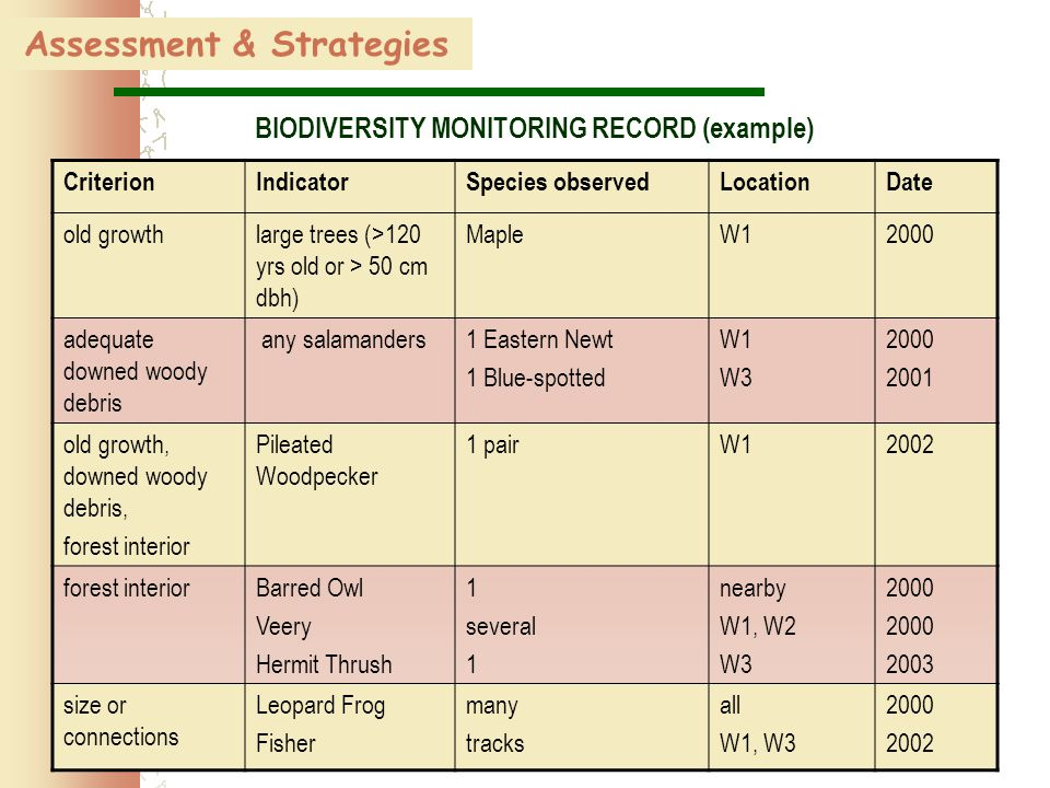 61 Assessment & Strategies BIODIVERSITY MONITORING RECORD (example) CriterionIndicatorSpecies observedLocationDate old growth large trees (>120 yrs old or > 50 cm dbh) MapleW12000 adequate downed woody debris any salamanders 1 Eastern Newt 1 Blue-spotted W1 W3 2000 2001 old growth, downed woody debris, forest interior Pileated Woodpecker 1 pairW12002 forest interiorBarred Owl Veery Hermit Thrush 1 several 1 nearby W1, W2 W3 2000 2003 size or connections Leopard Frog Fisher many tracks all W1, W3 2000 2002