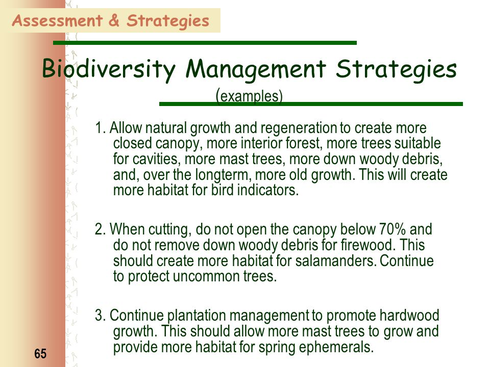 65 Assessment & Strategies Biodiversity Management Strategies ( examples) 1. Allow natural growth and regeneration to create more closed canopy, more