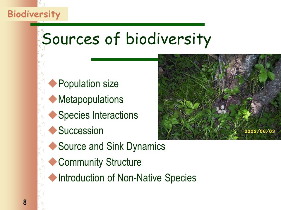 8 Sources of biodiversity  Population size  Metapopulations  Species Interactions  Succession  Source and Sink Dynamics  Community Structure  Introduction of Non-Native Species Biodiversity