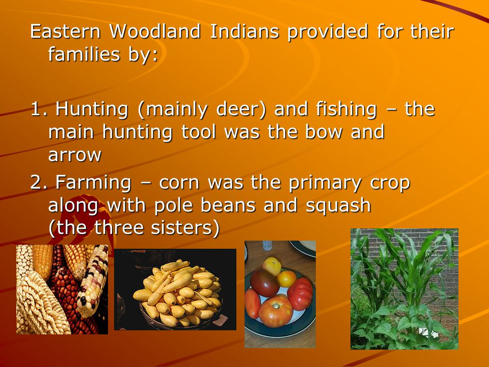 Eastern Woodland Indians provided for their families by: 1. Hunting (mainly deer) and fishing – the main hunting tool was the bow and arrow 2. Farming