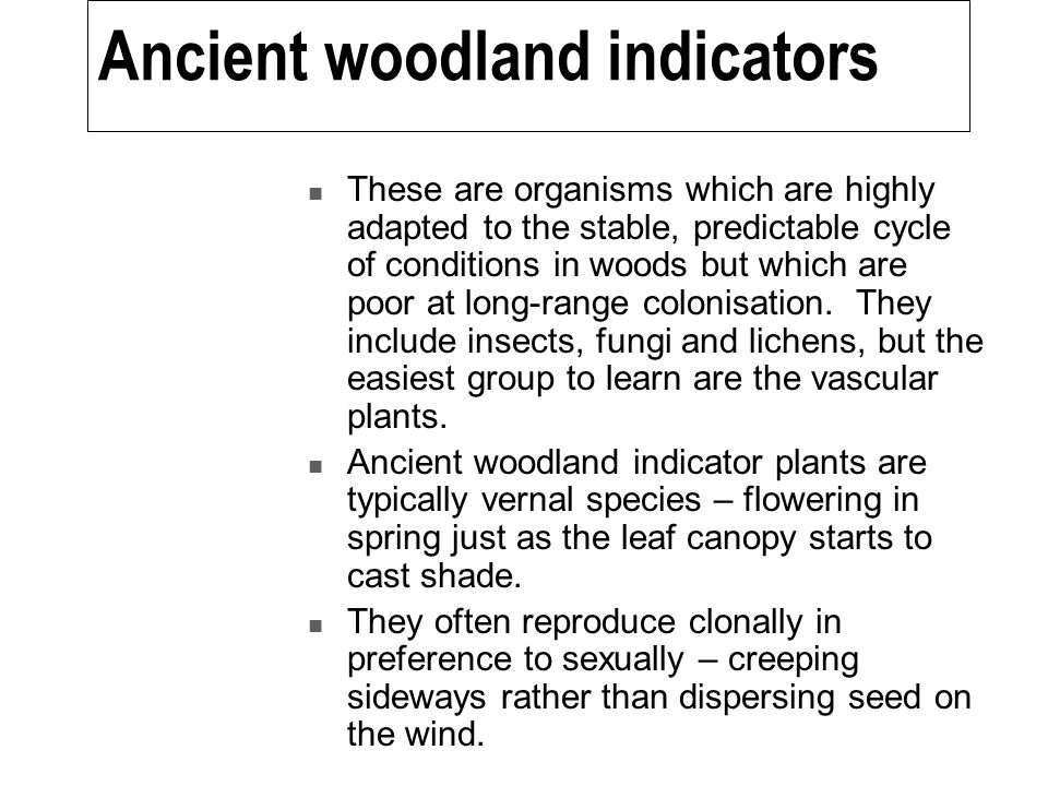 Ancient woodland indicators These are organisms which are highly adapted to the stable, predictable cycle of conditions in woods but which are poor at long-range colonisation.