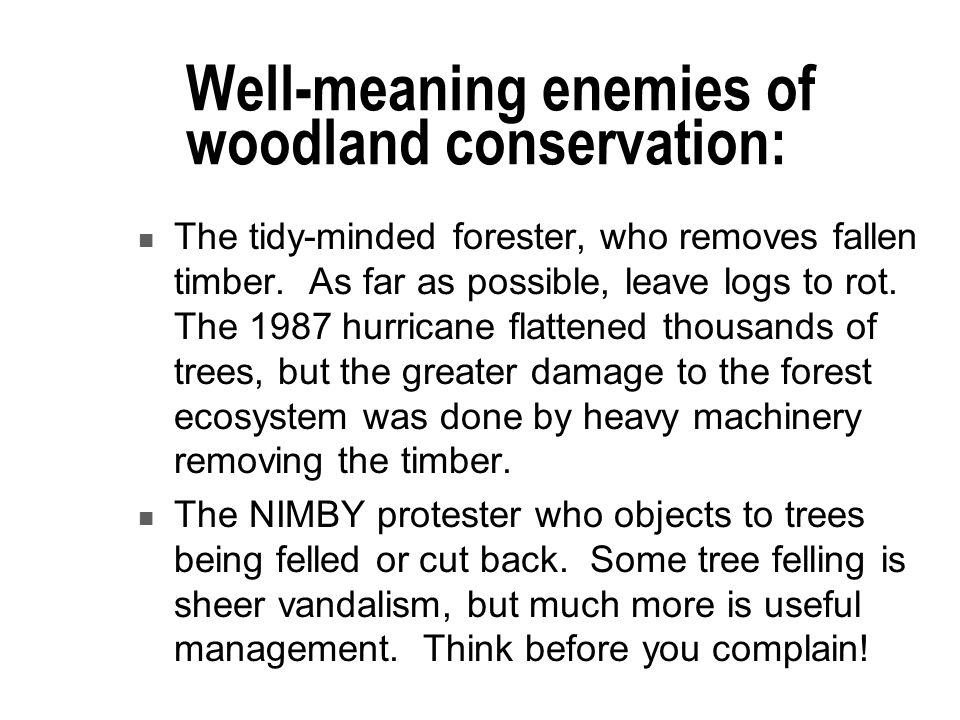 Well-meaning enemies of woodland conservation: The tidy-minded forester, who removes fallen timber.