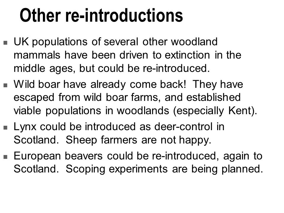Other re-introductions UK populations of several other woodland mammals have been driven to extinction in the middle ages, but could be re-introduced.