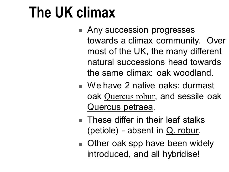 The UK climax Any succession progresses towards a climax community.