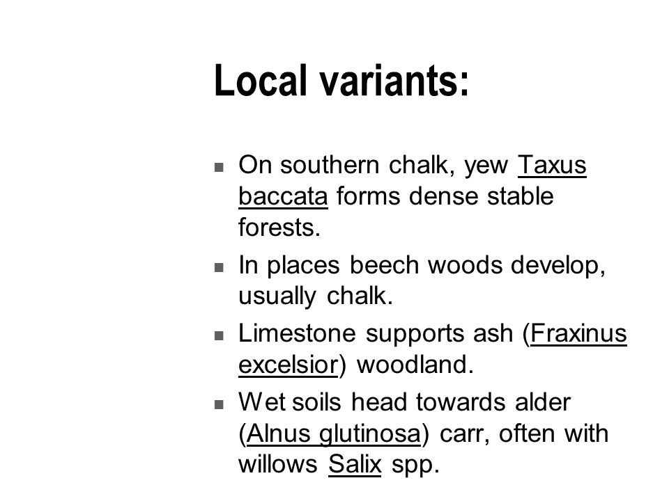 Local variants: On southern chalk, yew Taxus baccata forms dense stable forests.
