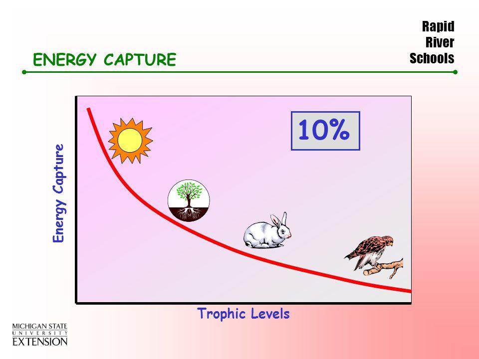 Rapid River Schools ENERGY CAPTURE Energy Capture Trophic Levels 10%