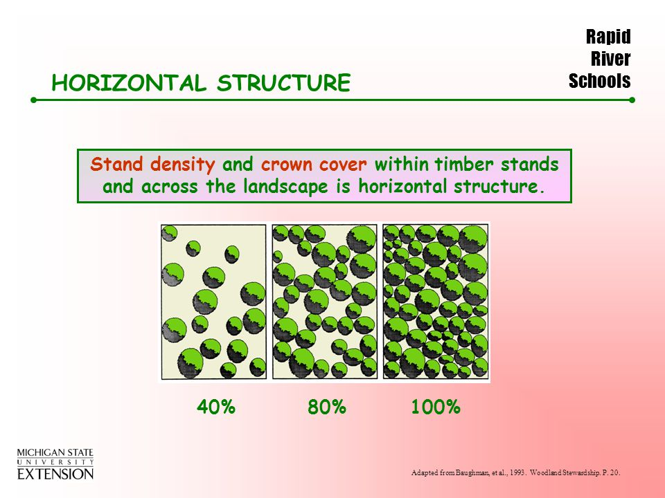 Rapid River Schools HORIZONTAL STRUCTURE Stand density and crown cover within timber stands and across the landscape is horizontal structure.