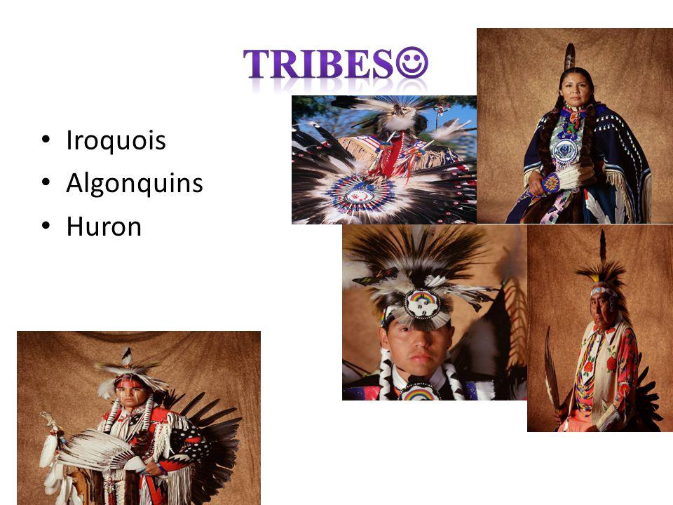 Iroquois Algonquins Huron