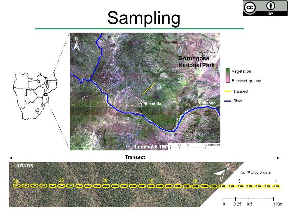Transect River No IKONOS data 1510 2025 5 Transect Vegetation Bare/wet ground IKONOS 0 0.51 Km 0.25 130 Nhambita Chitengo Gorongosa National Park Land