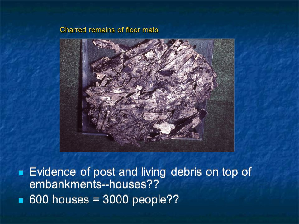 Evidence of post and living debris on top of embankments--houses .
